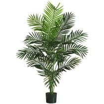 5 Paradise Palm Tree w/12 Lvs - SKU #5259