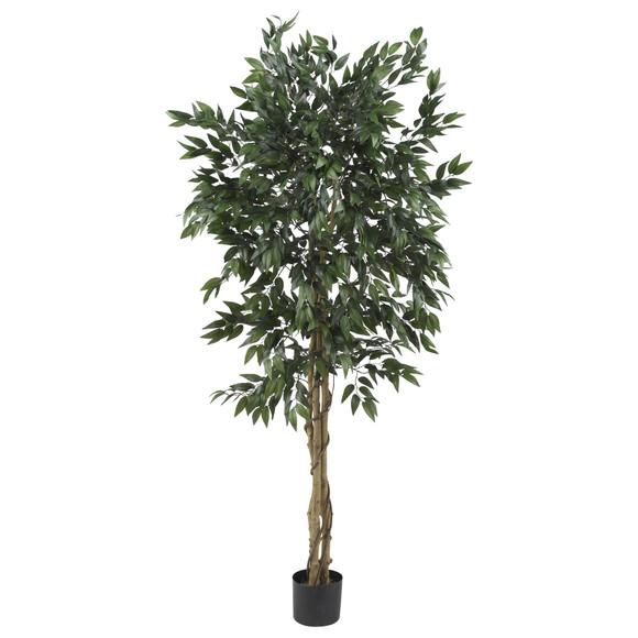 5 Smilax Tree - SKU #5266