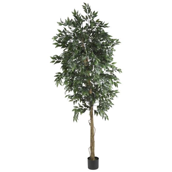 6 Smilax Tree - SKU #5267
