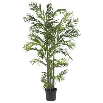 5 Areca Silk Palm Tree - SKU #5274