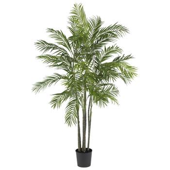 6 Areca Palm Silk Tree - SKU #5275
