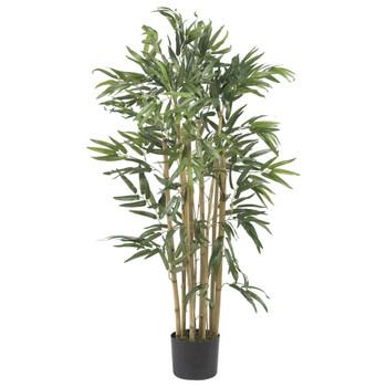 3 Multi Bambusa Bamboo Silk Tree - SKU #5279