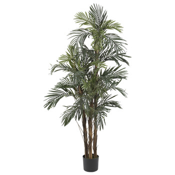 5 Robellini Palm Silk Tree - SKU #5283