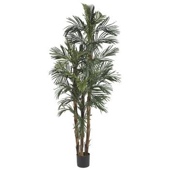 6 Robellini Palm Silk Tree - SKU #5284