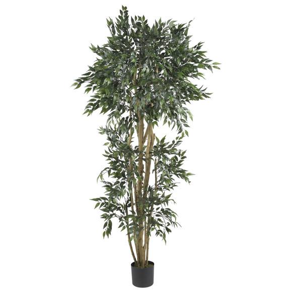 6 Green Ash Silk Tree - SKU #5285