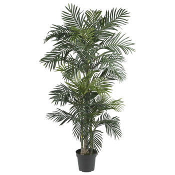 6.5 Golden Cane Palm Silk Tree - SKU #5289
