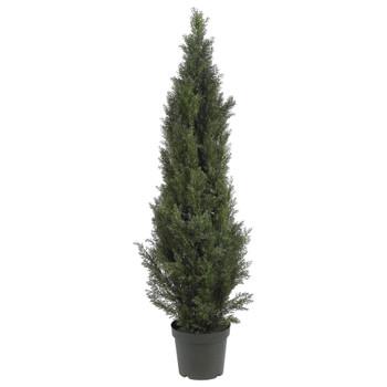 5 Mini Cedar Pine Tree Indoor/Outdoor - SKU #5291