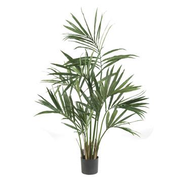 5 Kentia Palm Silk Tree - SKU #5307