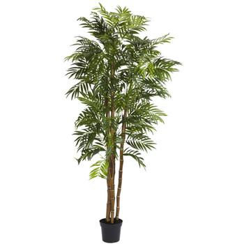 6 Bella Palm Silk Tree - SKU #5312