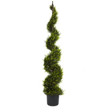 5 Cypress Spiral Tree - SKU #5325