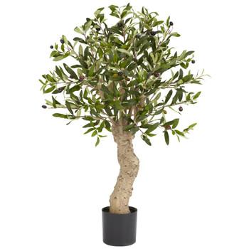 2.5 Olive Silk Tree - SKU #5331