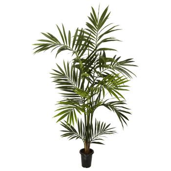 6 Kenitia Palm Silk Tree - SKU #5334