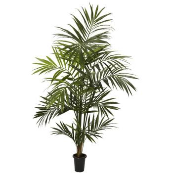 7 Kentia Palm Silk Tree - SKU #5335