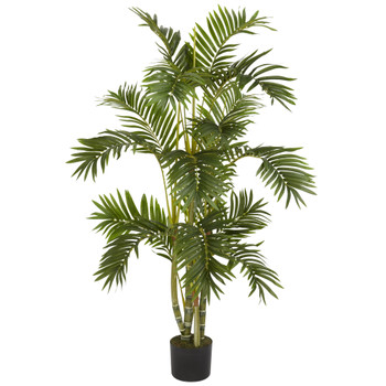 4 Areca Palm Silk Tree - SKU #5336