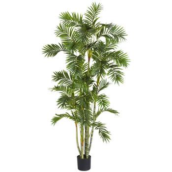 6 Areca Palm Silk Tree - SKU #5337