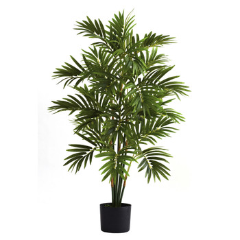 3 Areca Palm Tree - SKU #5355