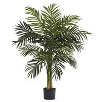 4 Golden Cane Palm Tree x 2 w/15 Lvs - SKU #5357