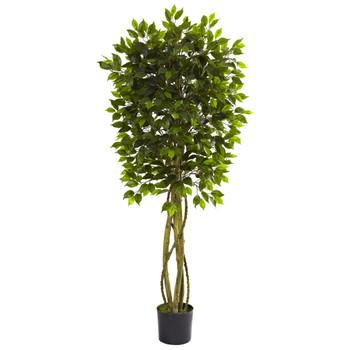 5.5 Ficus Tree UV Resistant Indoor/Outdoor - SKU #5380