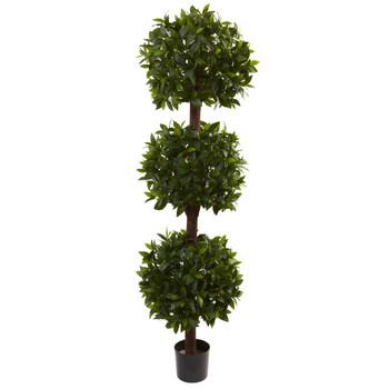 6.5 Sweet Bay Triple Ball Topiary - SKU #5399