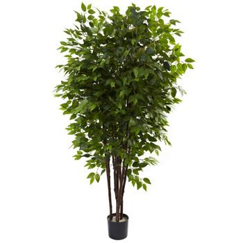 6.5 Deluxe Ficus Tree - SKU #5402