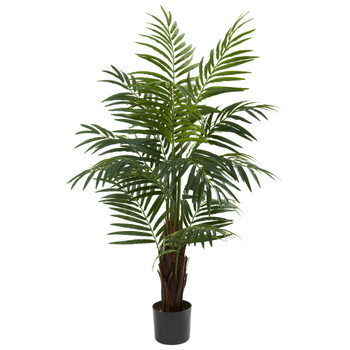 4 Areca Palm Tree - SKU #5415