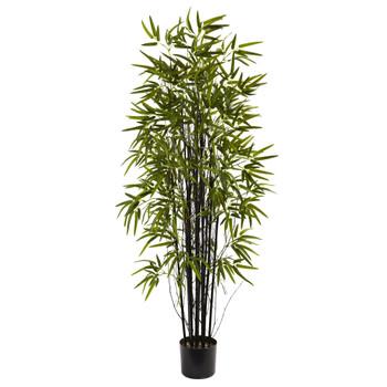 5 Black Bamboo Tree - SKU #5418