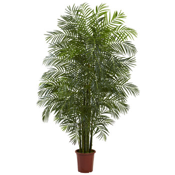 7.5 Areca Palm W/1966 Lvs UV Resistant Indoor/Outdoor - SKU #5435
