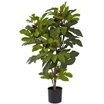 32 Fig Tree w/42 Lvs 15 Figs - SKU #5440