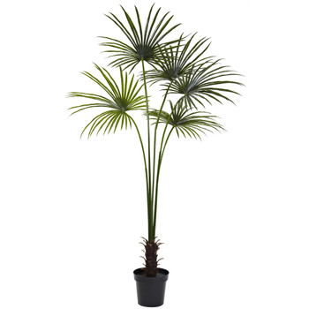7 Fan Palm Tree UV Resistant Indoor/Outdoor - SKU #5447