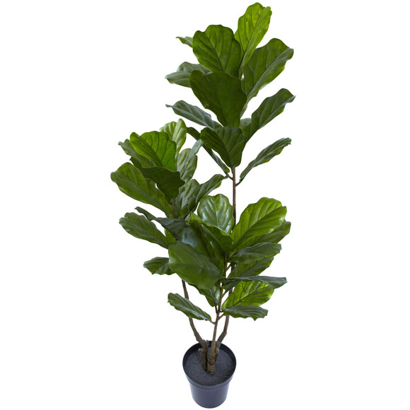 65 Fiddle Leaf Tree UV Resistant Indoor/Outdoor - SKU #5449 - 1
