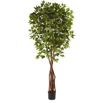 7.5 Super Deluxe Ficus Tree - SKU #5453
