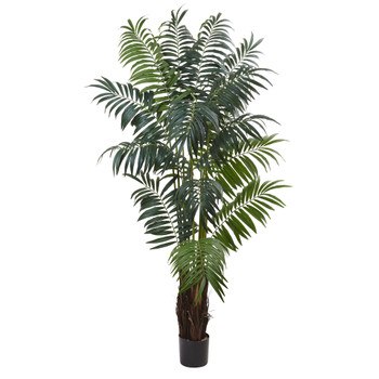 7.5 Bulb Areca Palm Tree - SKU #5454