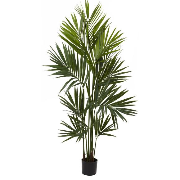 7 Kentia Palm Silk Tree - SKU #5462