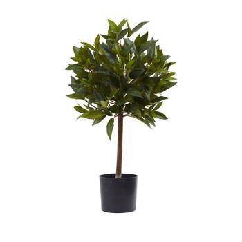 2 Sweet Bay Mini Ball Topiary - SKU #5464