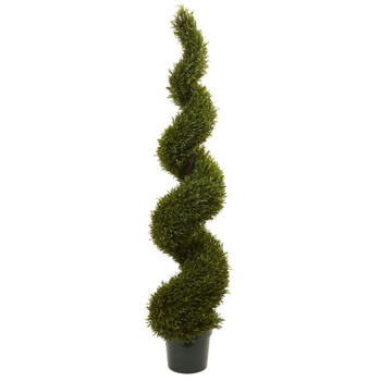 6 Rosemary Spiral Tree Indoor/Outdoor - SKU #5468