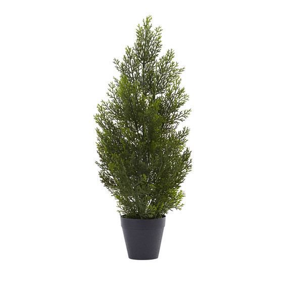 2 Mini Cedar Pine Tree Indoor/Outdoor - SKU #5469
