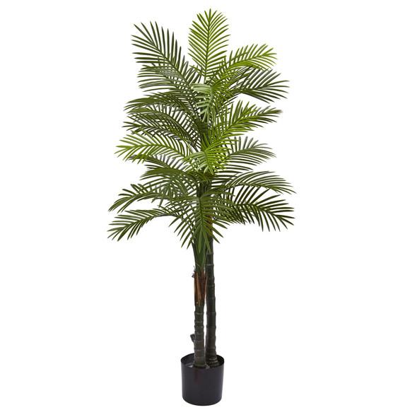 5.5 Double Robellini Palm Tree UV Resistant Indoor/Outdoor - SKU #5479