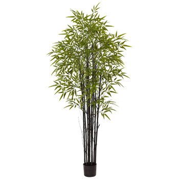 6 Black Bamboo Tree UV Resistant Indoor/Outdoor - SKU #5481
