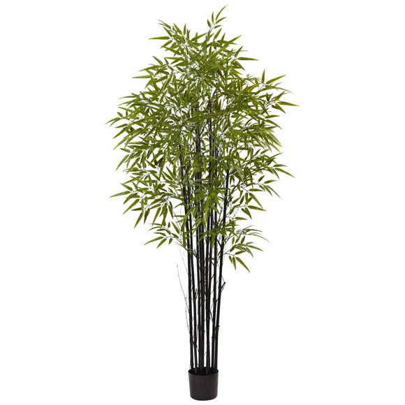 6 Black Bamboo Tree UV Resistant Indoor/Outdoor - SKU #5481