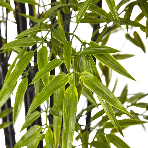 6 Black Bamboo Tree UV Resistant Indoor/Outdoor - SKU #5481 - 1