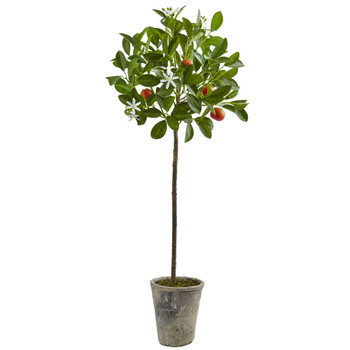 38 Potted Orange Tree - SKU #5484