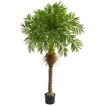 5.5 Robellini Palm Artificial Tree - SKU #5541