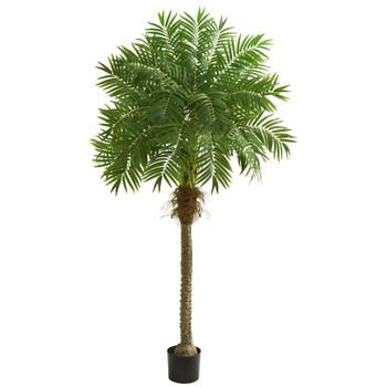 80 Robellini Palm Artificial Tree - SKU #5542