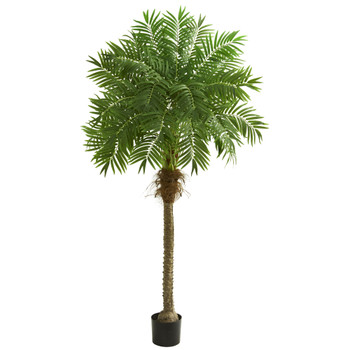 80 Robellini Palm Artificial Tree - SKU #5542