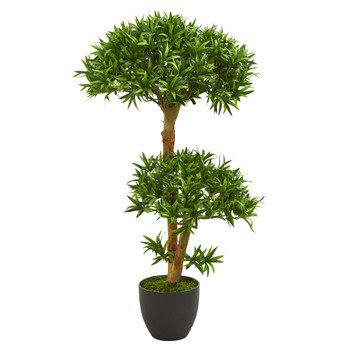3 Bonsai Styled Podocarpus Artificial Tree - SKU #5554