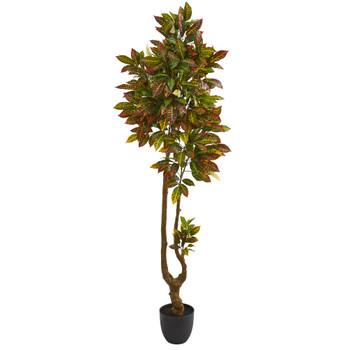 6 Croton Artificial Tree - SKU #5570