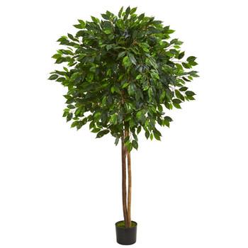 6.5 Ficus Artificial Tree - SKU #5571
