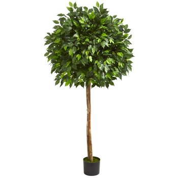 5.5 Ficus Artificial Tree - SKU #5572