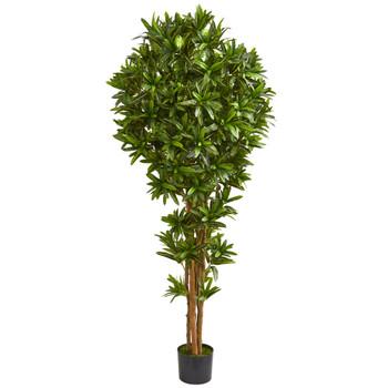 6 Dracaena Artificial Tree - SKU #5579