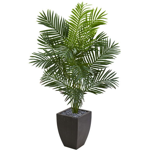 5.5 Paradise Artificial Palm Tree in Black Planter - SKU #5640